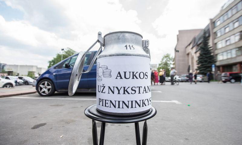 Prognozuojama, kad pieno ūkių skaičius Lietuvoje toliau mažės. Vladimiro Ivanovo (VŽ) nuotr.