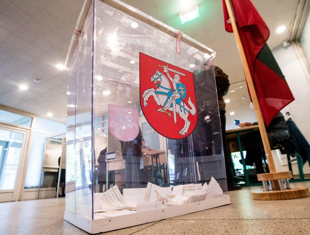 Paprašyta įvertinti referendumo dėl dvigubos pilietybės konstitucingumą