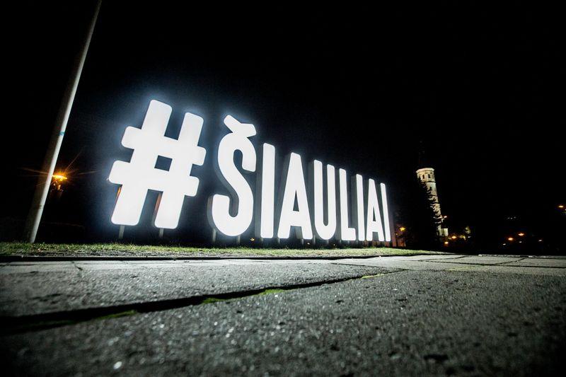 Šiaulių savivaldybei nesiseka rasti investuotojų 5 laisviems sklypams . Juditos Grigelytės (VŽ) nuotr.