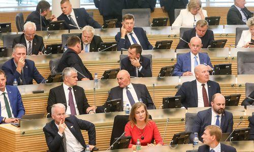 Seime stringa Vyriausybės siūlymas didinti individualios veiklos apmokestinimą