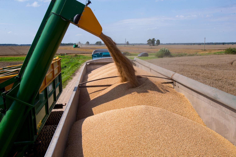 """Dėl trąšų tiekėjui taikomų sankcijų """"Agrokoncernas"""" kreipėsi į URM"""