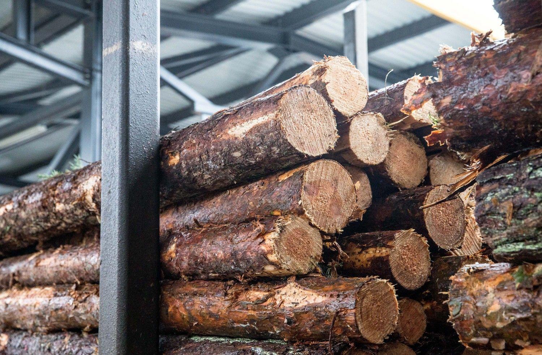 """Baltarusija pasiruošusi parduoti medienos įmonę """"Borisovdrev"""""""