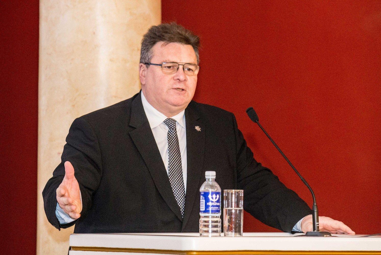 L. Linkevičius kalba apie Rusijosagresiją Kerčės sąsiauryje, kuri turi būti pasmerkta ir liautis