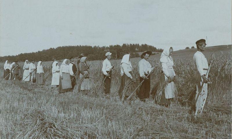 Ne itin patenkinti dėmesiu – lietuvių valstiečiai per rugiapjūtę. M. K. Čiurlionio dailės muziejus, Stanislovo Kosakovskio nuotr.