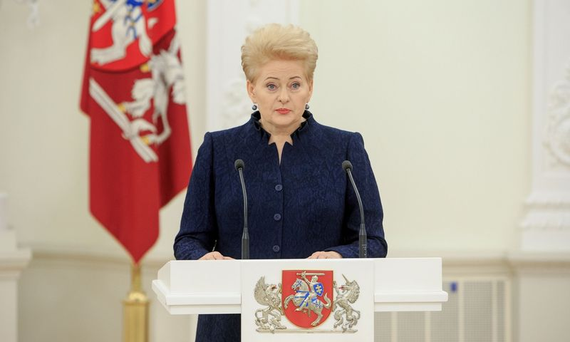 Prezidentė Dalia Grybauskaitė. Vladimiro Ivanovo (VŽ) nuotr.