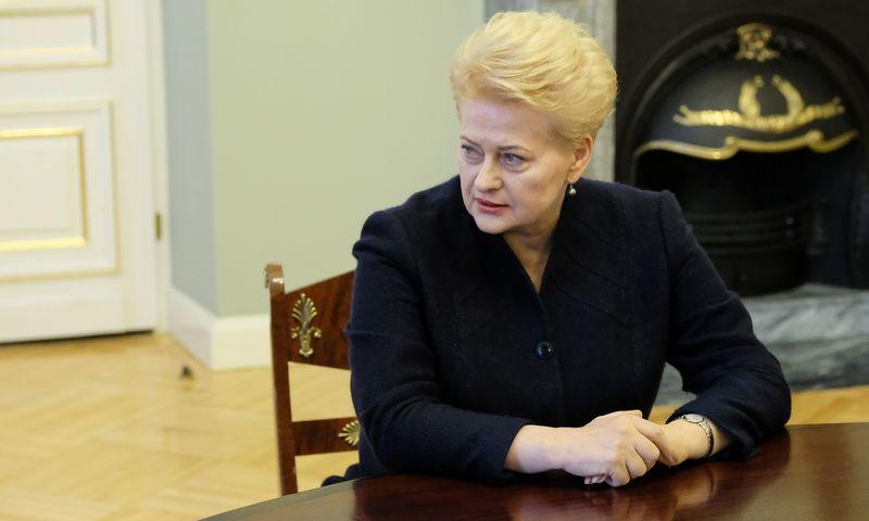 Prezidentė Dalia Grybauskaiotė. Vladimiro Ivanovo (VŽ) nuotr.