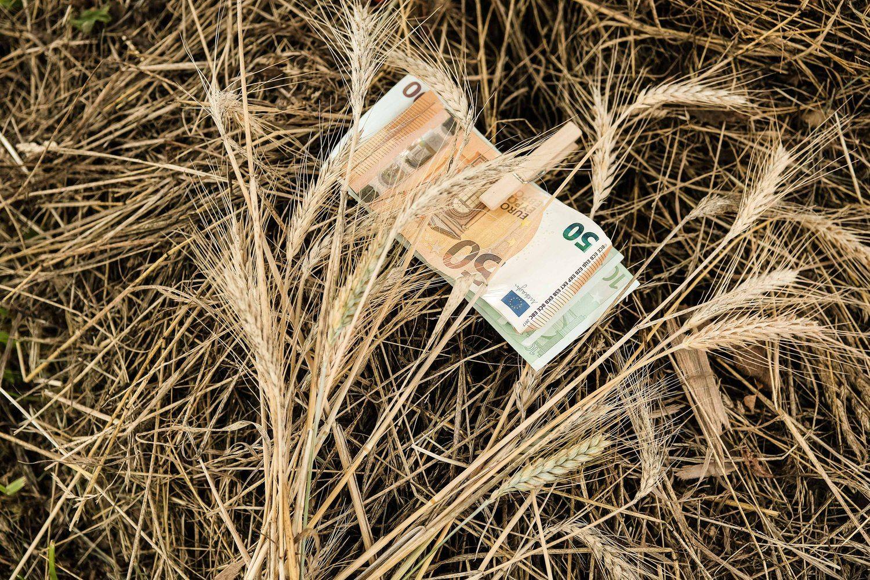 Prezidentė: siūlomų tiesioginių išmokų žemdirbiams dydis Lietuvai nepriimtinas