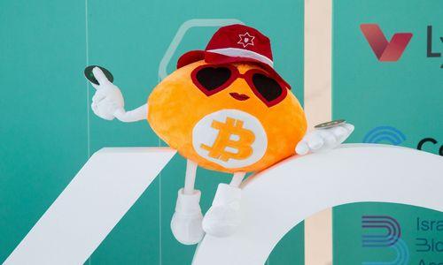 Bitkoinas nenori metų užbaigti nuleista galva