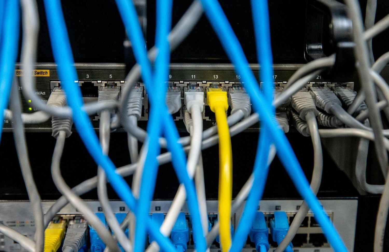 Vyriausybės planuota 1,5 mln. Eur informacinė kampanija aplenkė interneto portalus