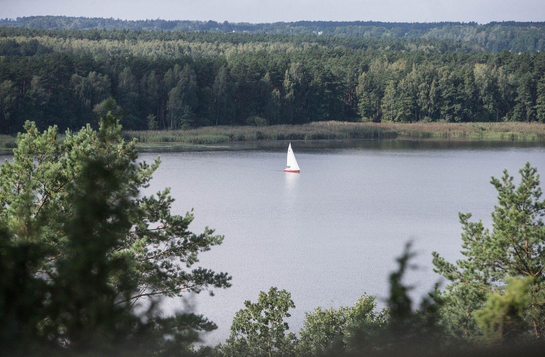 Kauno mariose – jau beveik 4 kartus daugiau žuvies nei prieš penkmetį