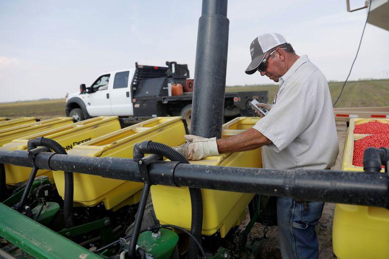 """Iki šiol JAV ūkininkai, norintys eksportuoti genetiškai modifikuotas sojos pupeles į Kiniją, neturėjo daug galimybių rinktis sėklos. Shannon Stapleton (""""Reuters"""" / """"Scanpix"""") nuotr."""