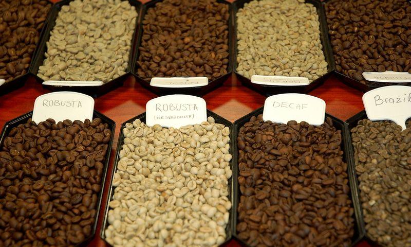 """Kavos pupelės UAB """"Kavos bankas"""" veikiančiame Kavos institute. Indrės Sesartės nuotr."""