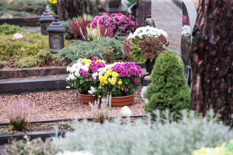 Seimas nustatė baudas už kremavimo, kapinių priežiūros ir palaikų gabenimo pažeidimus