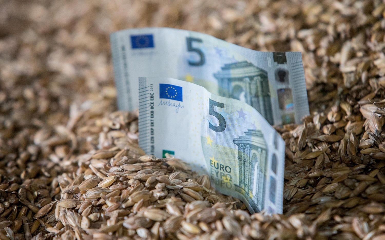 Didžiausia infliacija ES – Estijoje