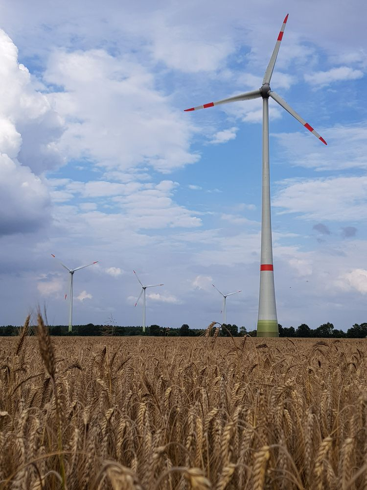 Telšių rajone planuojamas vėjo jėgainių parkas