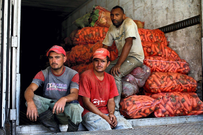 Nelegalių maisto produktų ieškos sandėliuose ir automobiliuose