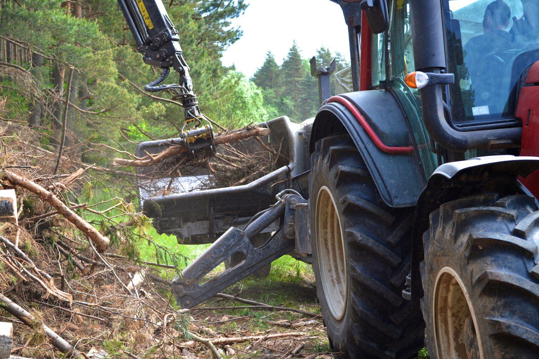 Dar nestreikuoja, bet miško tvarkytojų kantrybė senka