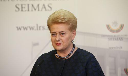 D. Grybauskaitė atsakymuose Seimo komitetui gynė valdžios sprendimus per 2009-ųjų krizę