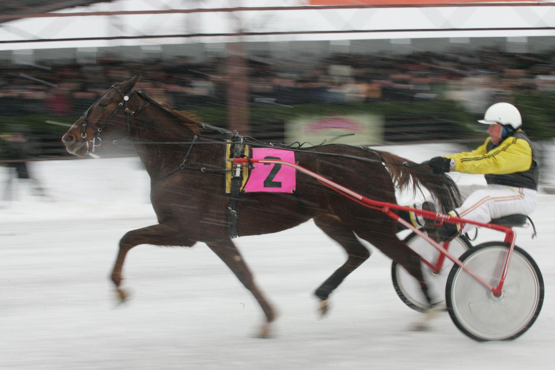 Savaitgalį – tradicinės Sartų žirgų lenktynės