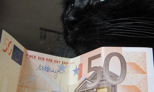 Gruodžio karštinė 377 mln. Eur viešųjų finansų perteklių pavertė deficitu