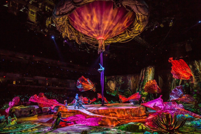 """""""Cirque du Soleil"""" krepšelyje – dar vienas pirkinys už milijonus"""
