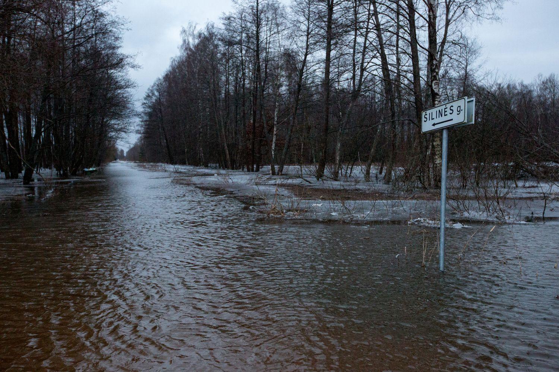 Dėl potvynio Šilutės rajone skelbiama ekstremalioji situacija