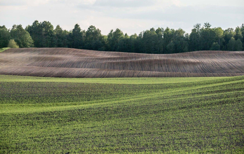 VMI grąžina žemės mokesčio permokas