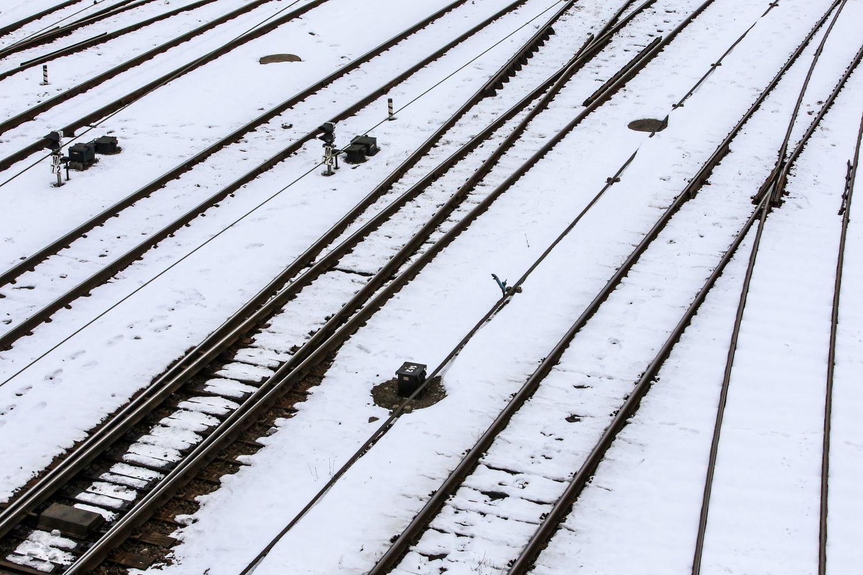 """""""Lietuvos geležinkeliai"""" pirks bėgių už 36,5 mln. Eur"""