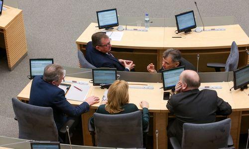 Seimo narių veiklos įstatymas į priekį gali pajudėti jau be atostogų įteisinimo