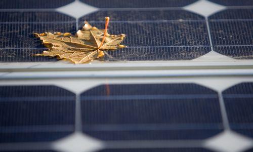 Liuksemburgas perka 550 GWh Lietuvos žaliosios energijos statistikos
