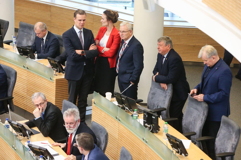 Seimo komitetas siūlo referendumą dėl pilietybės skelbti gegužės 12 d.