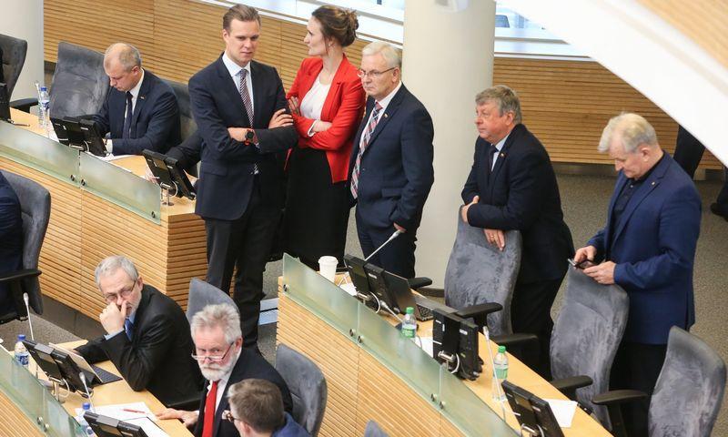 Seimas planuoja apsispręsti, ar skelbti referendumą dėl Seimo narių skaičiaus mažinimo nuo 141 iki 121. Vladimiro Ivanovo (VŽ) nuotr.