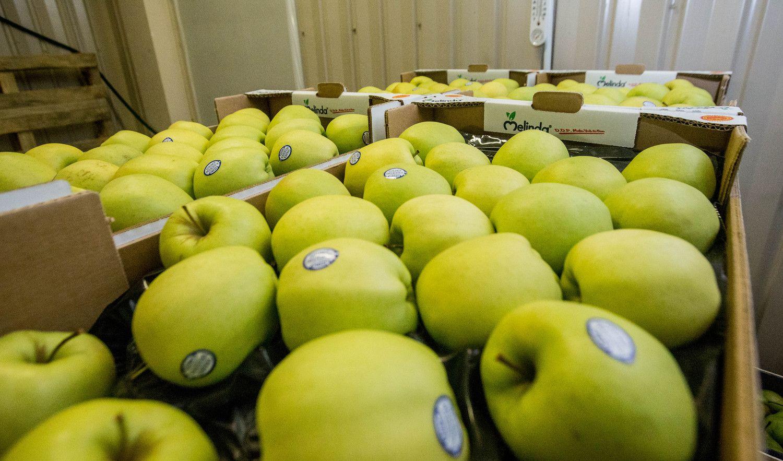 EP patvirtino taisykles, turinčias pažaboti nesąžiningą prekybininkų elgesį
