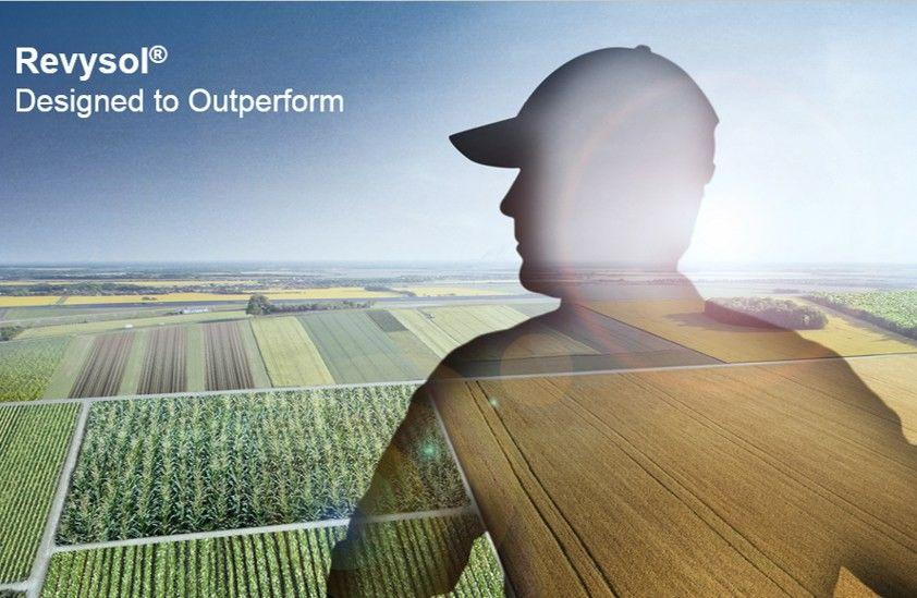 Patvirtinta inovatyvaus BASF fungicido Revysol® registracija Europoje