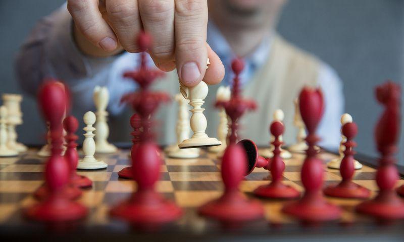 """Viskas tampa """"ne tik"""", kai į savo kasdieninę veiklą pažvelgiame per žaidimo metaforą. Juditos Grigelytės (VŽ) nuotr."""