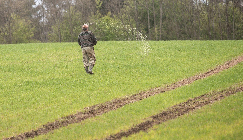 Supaprastintas pasėlių deklaravimas – kokie pokyčiai laukia žemdirbių