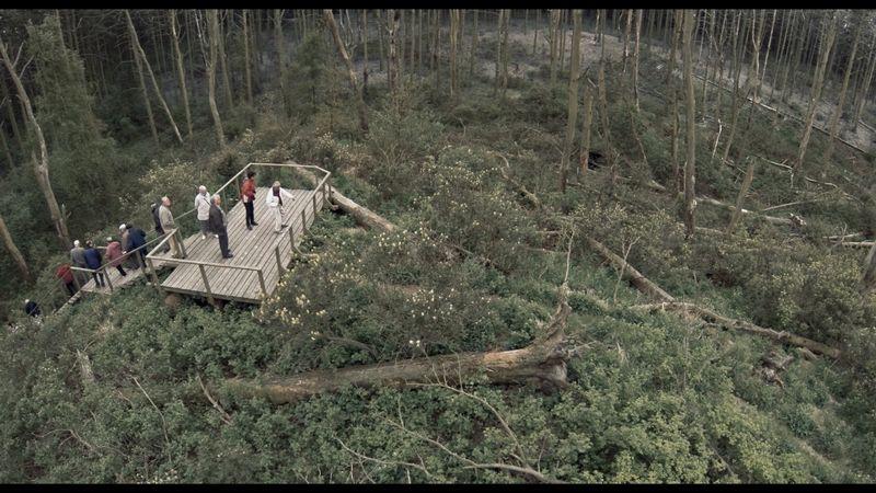 """Kadras iš filmo """"Rūgštus miškas""""."""