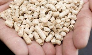 Granulių gamintojai susidūrė su problemomis: stabdo naujos gamyklos statybą