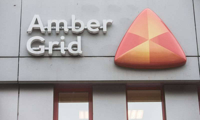 """Amber grid"" išmokės 5,2 mln. Eur dividendų. Juditos Grigelytės (VŽ) nuotr."