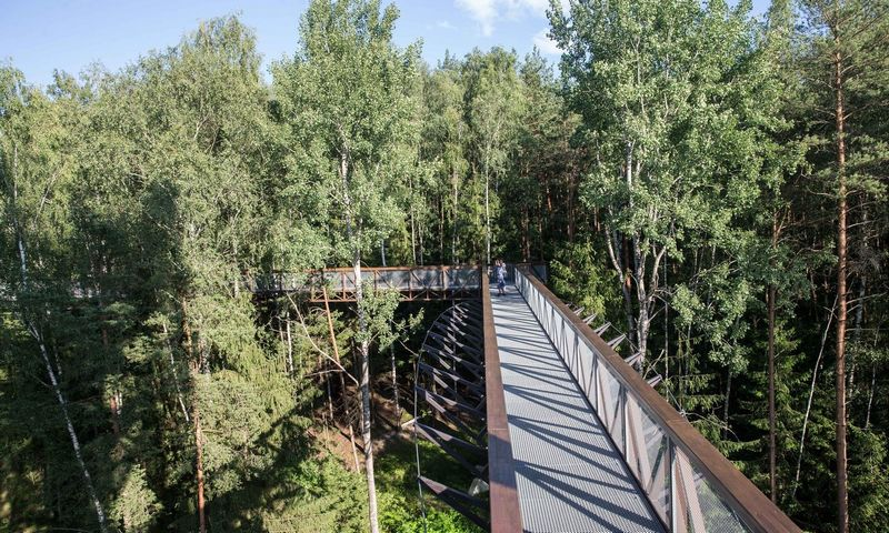 Medžių lajų takas Anykščių regioniniame parke. Juditos Grigelytės (VŽ) nuotr.