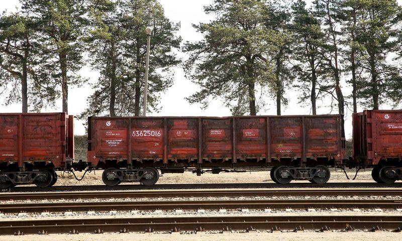 """Dauugiausiai divinendų į valstybės biudžetą už praėjusius metus perves """"Lietuvos geležinkeliai"""". Vladimiro Ivanovo (VŽ) nuotr."""