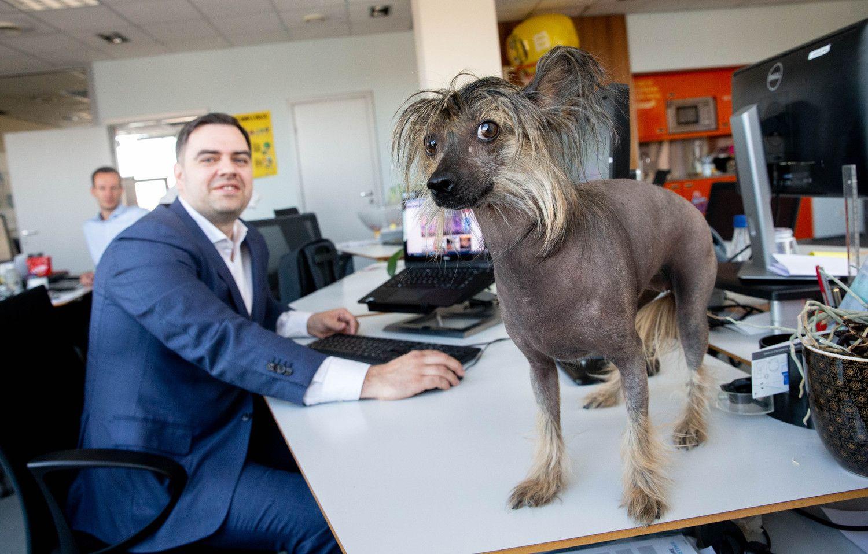 """Pardavimų valanda bendrovėje """"Mars Lietuva"""": sėkmę lemia kompetencijos, ambicijos ir disciplina"""