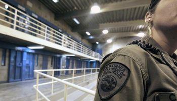 Iliustruotoji istorija: nusikaltėliai yra kaip žvėrys