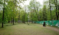 Vilniaus valdžia po kritikos dėl medžių kirtimostabdo Sapiegų parko projektą