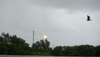 OPEC rengiasi pratęsti prisuktų kranelių politiką