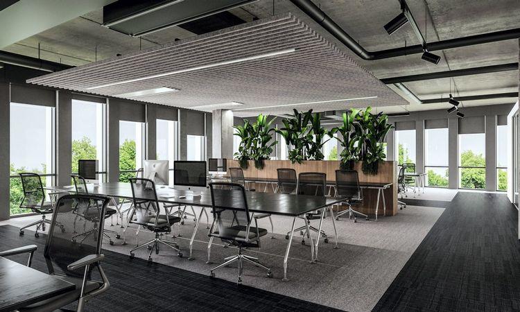 Tyrimas: efektyviausiai žmonės dirbtų miške. Kaip sukurti gamtą biure?