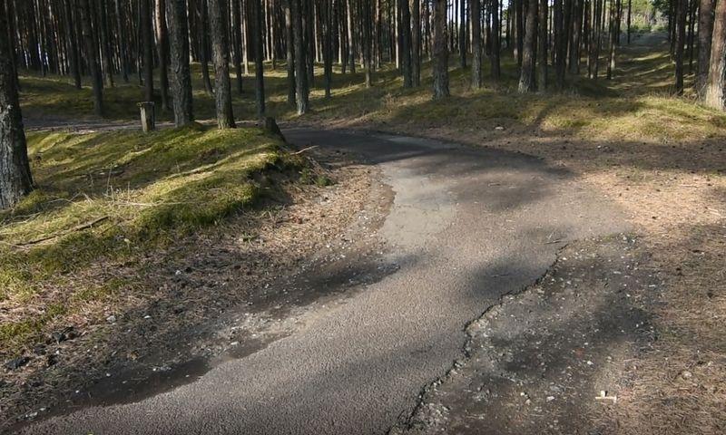 Tarptautinės reikšmės dviračių takas Neringoje tarp Smiltynės ir Pervalkos. Neringos savivaldybės nuotr.