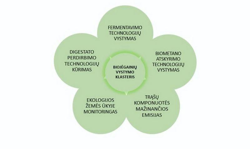 Biojėgainių vystymo klasterio veiklos kryptys.