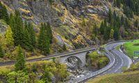 Iliustruotoji istorija: šveicaro kelias į sėkmę