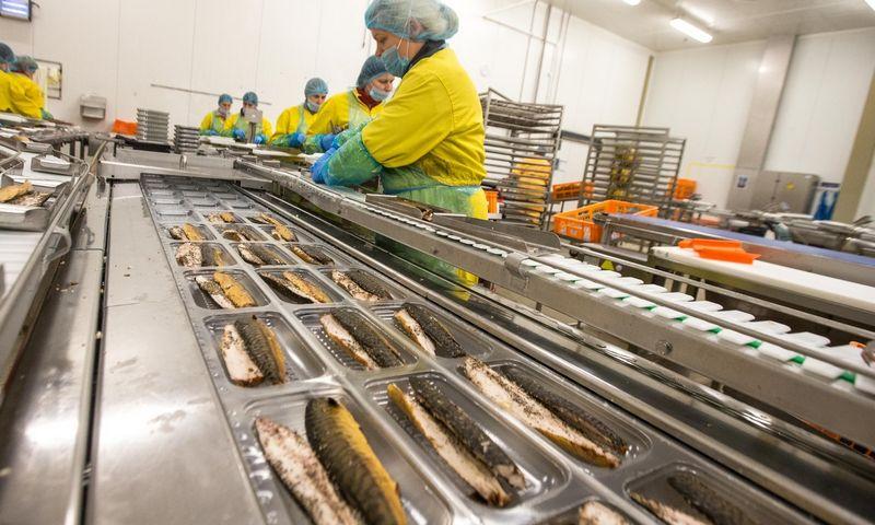 """""""Vičiūnų"""" įmonių grupės žuvų perdirbimo ir žuvies produktų gamybos UAB """"Baltic Food Partners"""" fabrikas Plungėje. Juditos Grigelytės (VŽ) nuotr."""